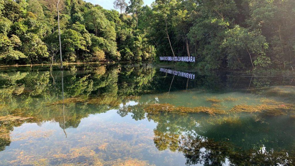 Kota Damansara Community Forest Reserve (KDCF)