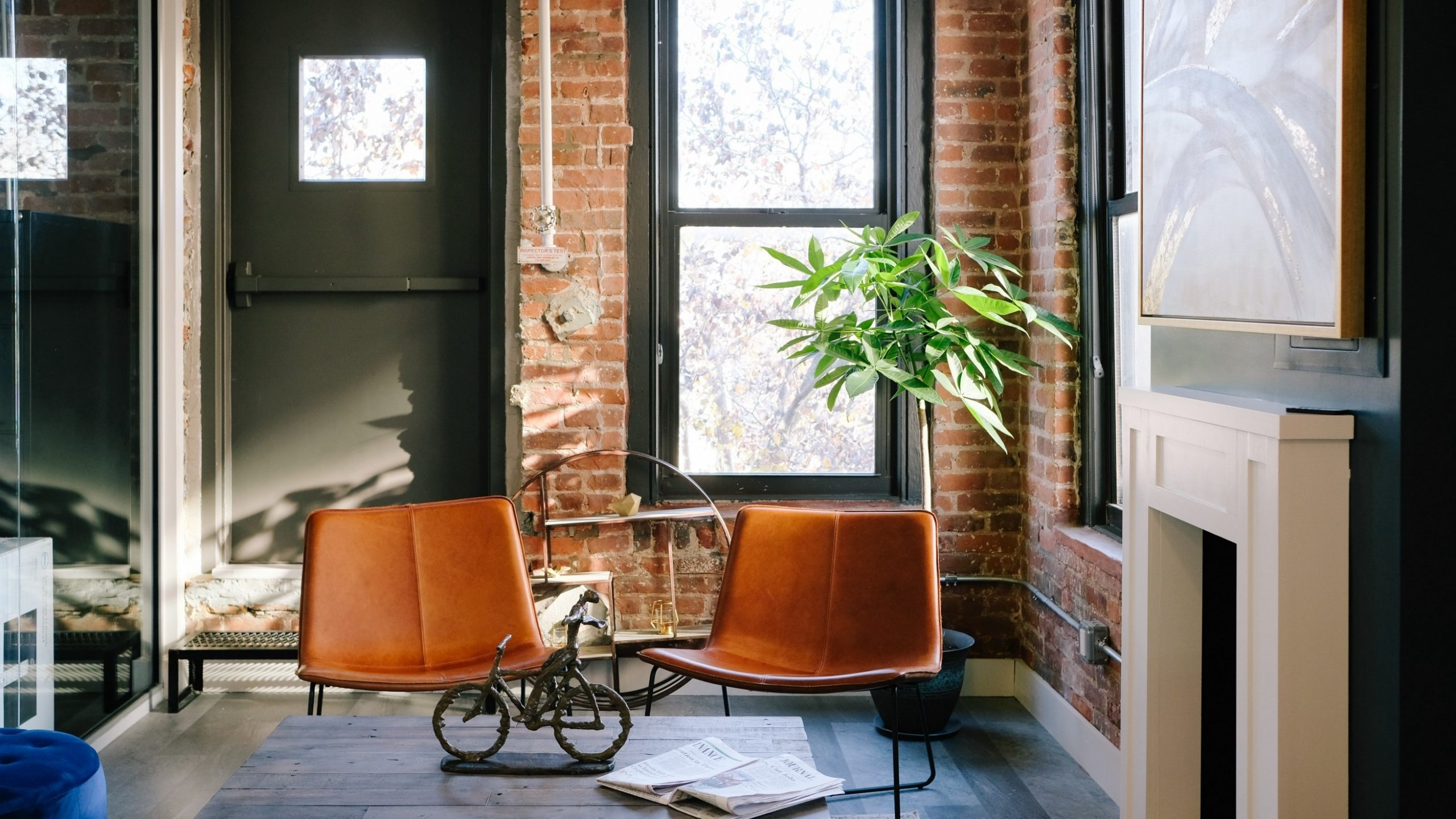 How Co-living Companies are Shaping Today's Rental Market